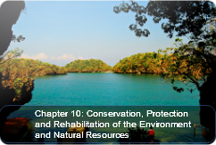 Conservation, Protection, and Rehabilitation of the Environment and Natural Resources