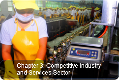 Competitive Industry and Services Sector