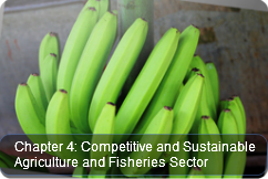 Competitive and Sustainable Agriculture and Fisheries Sector